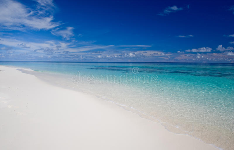 Download Tropical beach stock photo. Image of enjoy, shore, destination - 14134390