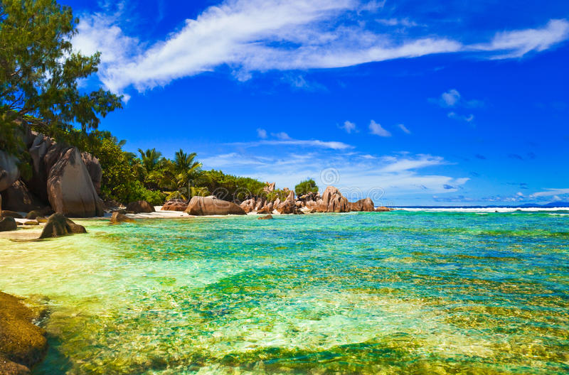 Download Tropical beach stock photo. Image of pierrot, coastline - 19607864