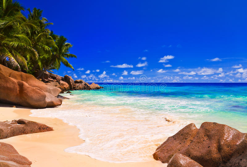 Download Tropical beach stock photo. Image of destinations, background - 20155098