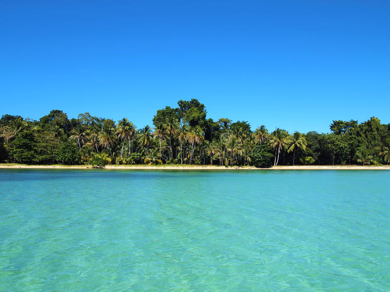 Download Tropical Beach Royalty Free Stock Photos - Image: 22524328