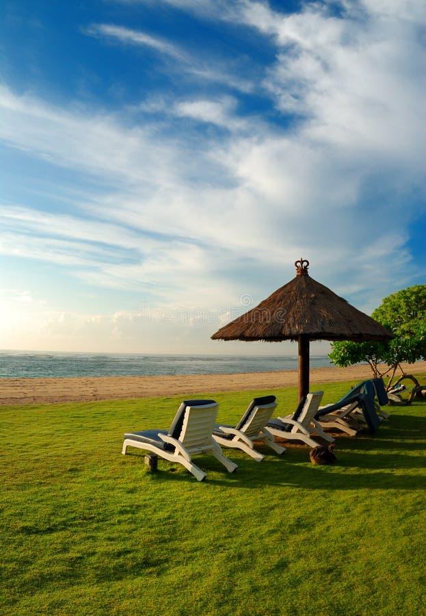 Download Tropical Beach stock photo. Image of grass, resort, seaside - 2303748