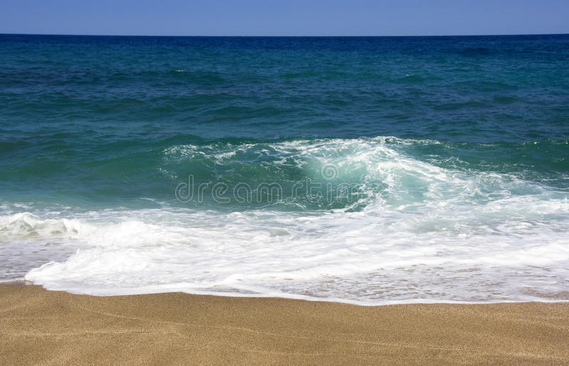 Download Tropical Beach stock photo. Image of green, coastline - 24473094