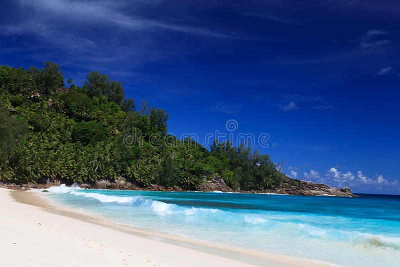 Download Tropical beach stock photo. Image of landscape, shore - 25131714