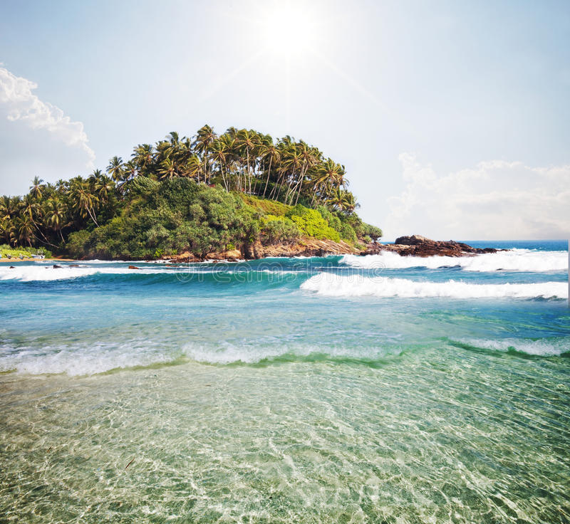 Download Tropical beach stock image. Image of waterside, coast - 25143443