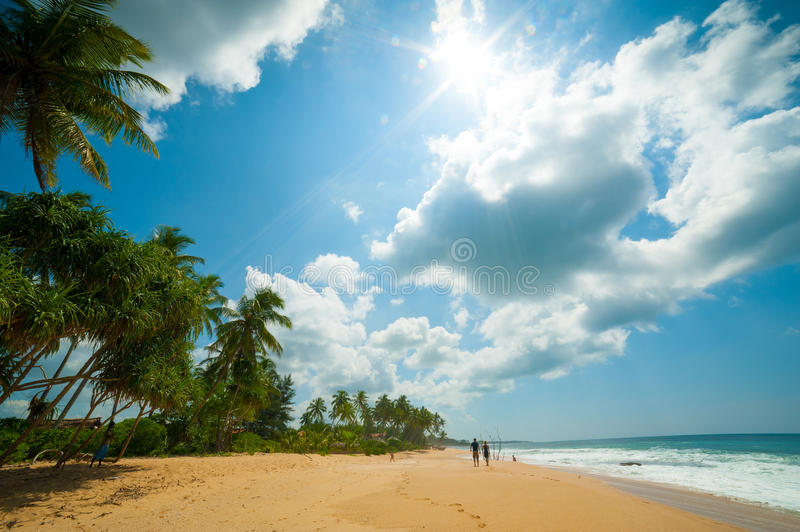 Download Tropical beach stock photo. Image of scenic, caribbean - 25298534