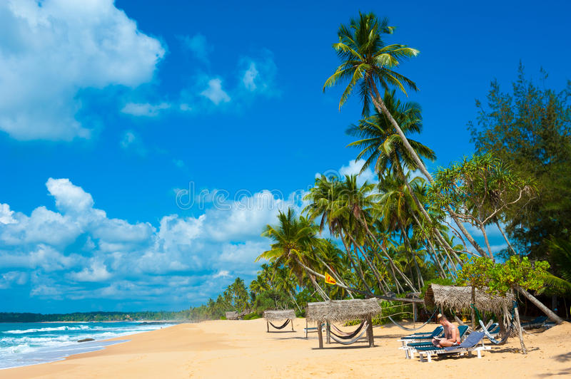 Download Tropical beach stock photo. Image of beautiful, reading - 26107790