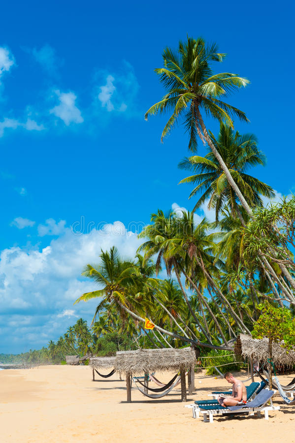 Download Tropical beach stock image. Image of reading, background - 26120499