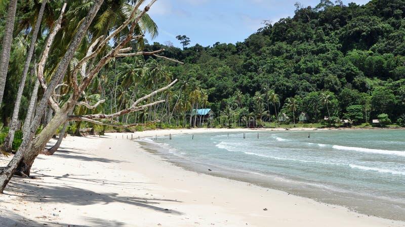 Download Tropical Beach stock photo. Image of long, ocean, beach - 26159060