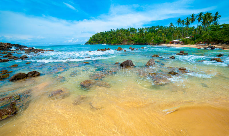 Download Tropical beach stock photo. Image of lounge, background - 26338440