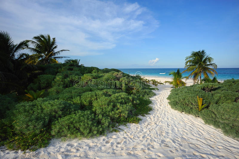 Download Tropical Beach Stock Photos - Image: 27016443