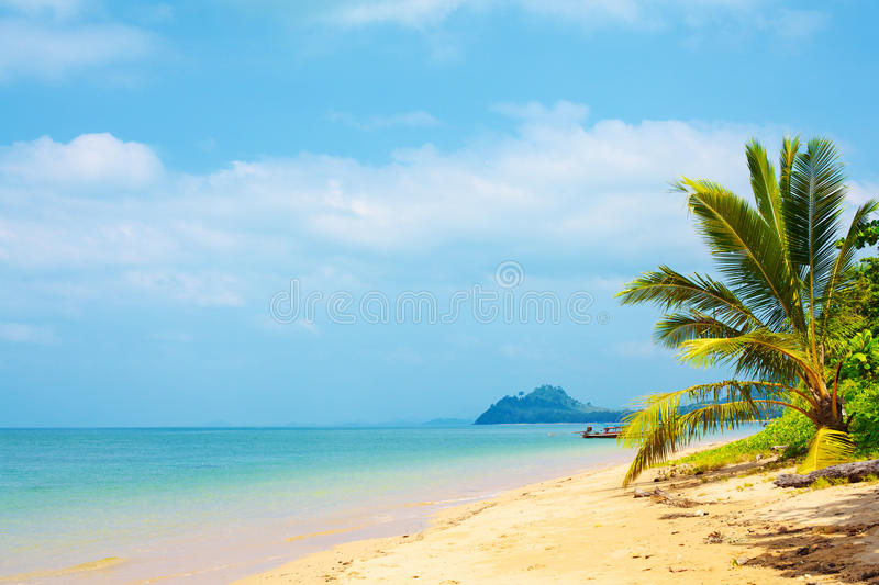 Download Tropical Beach stock image. Image of jungle, recreation - 27367311