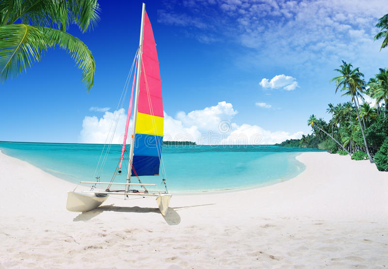 Download Tropical beach stock photo. Image of destination, idillic - 27506830