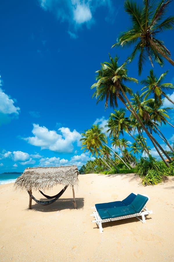 Download Tropical beach stock image. Image of deck, idyllic, coastline - 27972039