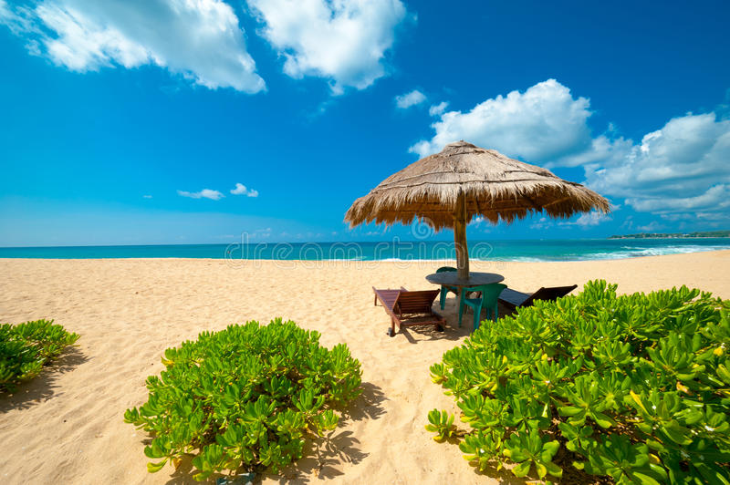Download Tropical beach stock image. Image of deck, calm, scenic - 27972059