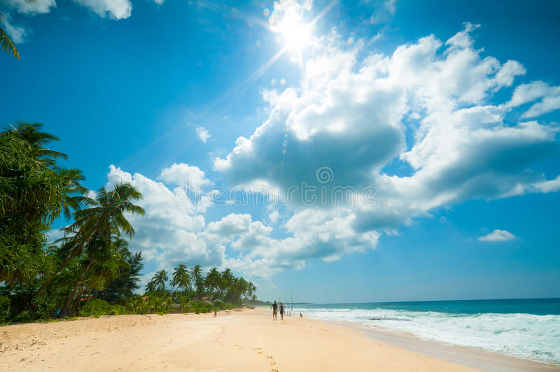 Download Tropical beach stock photo. Image of blue, seascape, nobody - 28019502