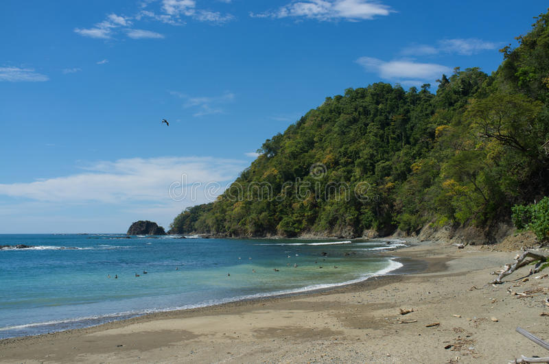 Download Tropical Beach Royalty Free Stock Photo - Image: 28152925