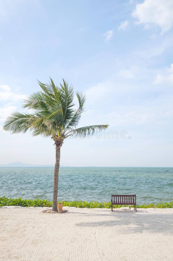 Download Tropical Beach stock image. Image of relaxation, reclining - 28275951