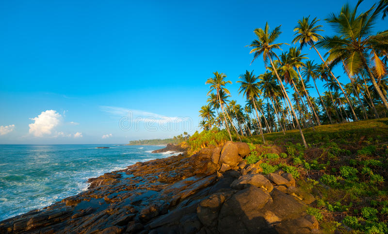 Download Tropical beach stock photo. Image of maldives, seascape - 28336408