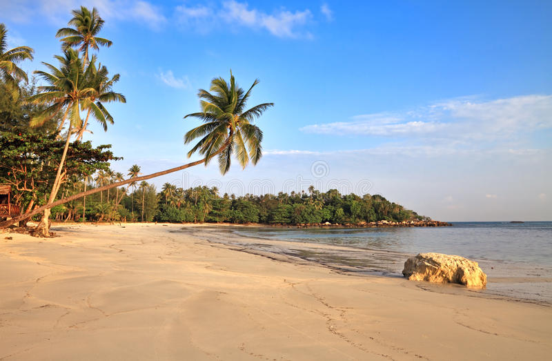 Download Tropical beach stock photo. Image of bintan, remote, landscape - 28562394