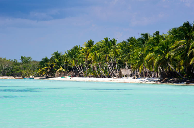 Download Tropical Beach Stock Photo - Image: 29586720