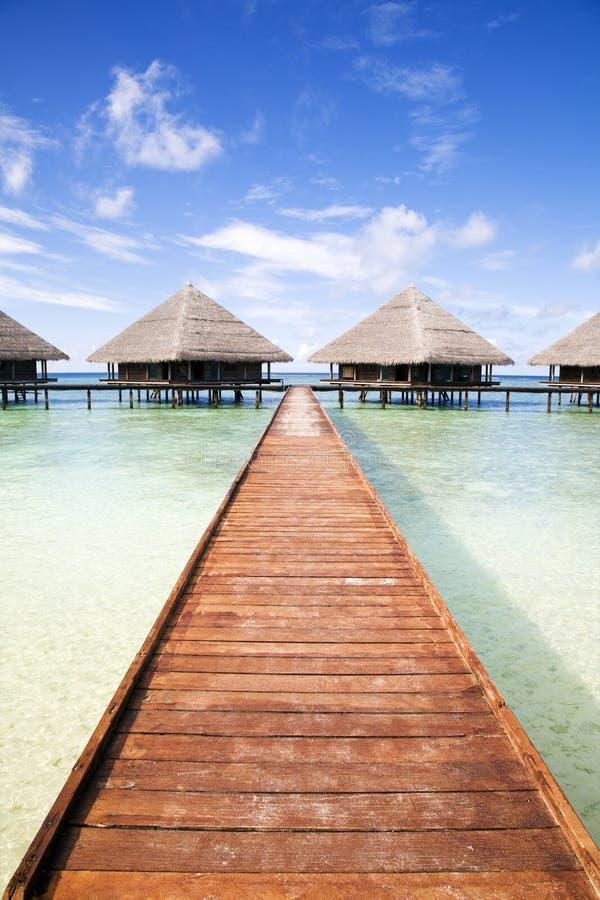 Download Tropical beach stock photo. Image of summer, hawaii, caribbean - 4100152