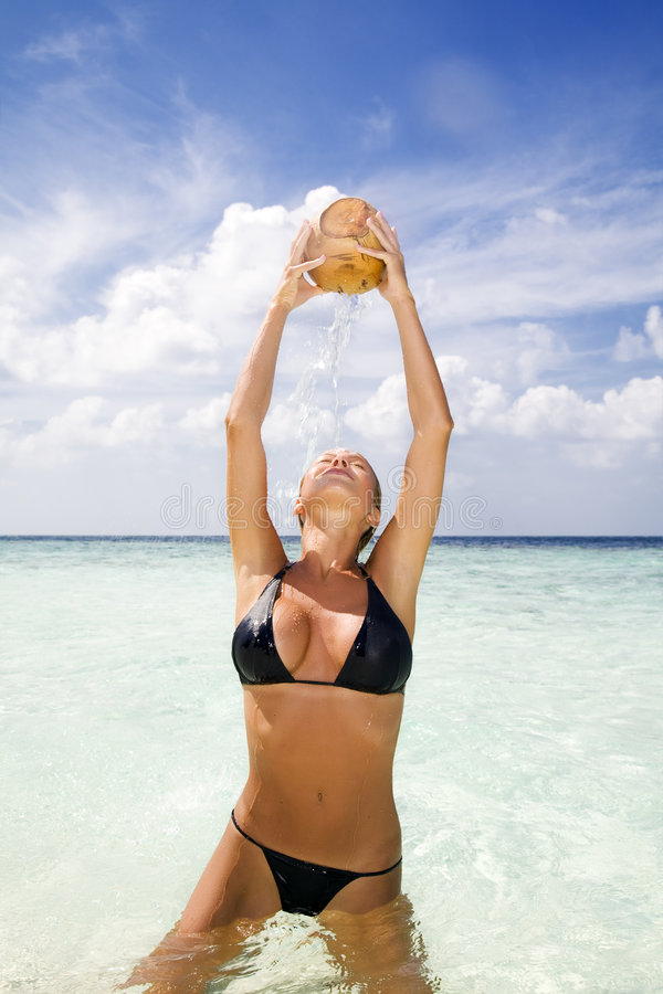 Download Tropical beach stock photo. Image of drinking, freshness - 4116778