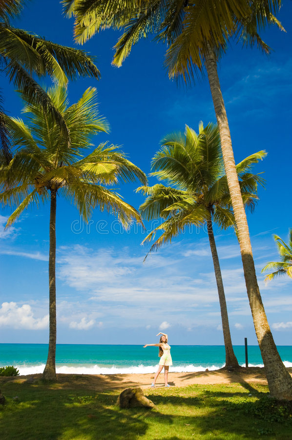 Download Tropical beach stock photo. Image of healthy, aqua, beauty - 4914214