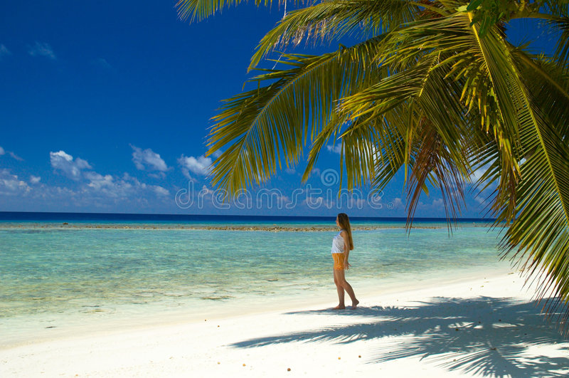 Download Tropical Beach Royalty Free Stock Photos - Image: 4944318