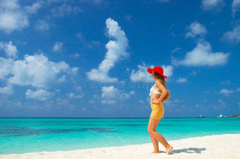 Download Tropical beach stock photo. Image of hawaii, beatitude - 4944554