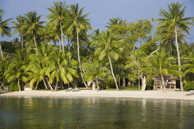 Download Tropical beach stock photo. Image of sunny, relaxation - 5187668