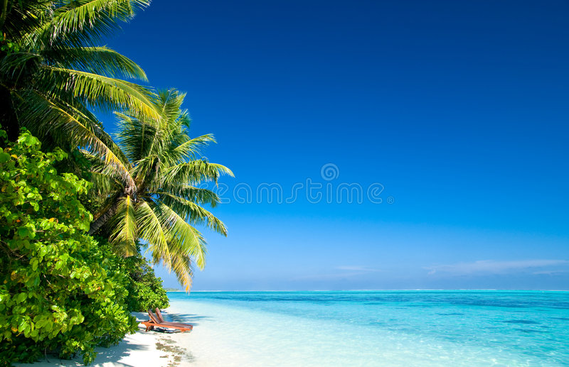 Download Tropical beach stock image. Image of beauty, tourism, blue - 5498561
