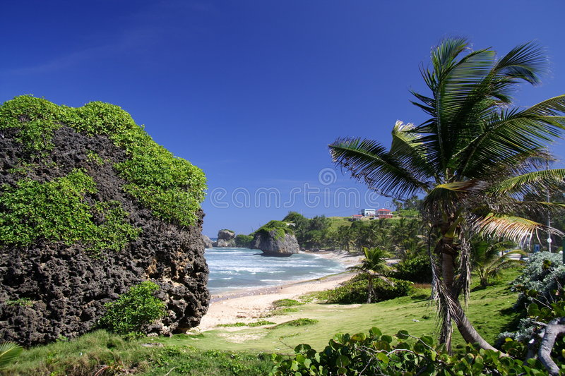 Download Tropical Beach Royalty Free Stock Images - Image: 684779