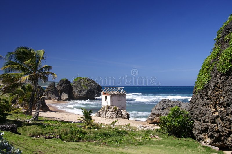 Download Tropical Beach stock photo. Image of carribean, batsheba - 684784