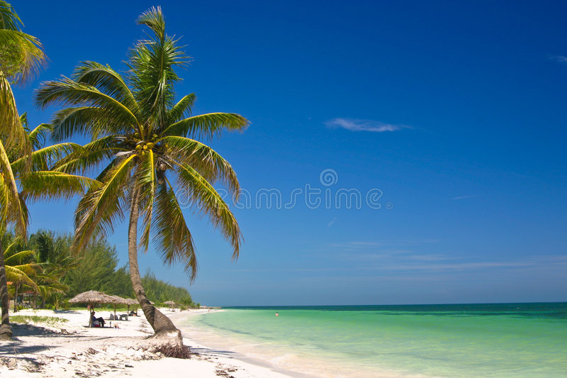 Download Tropical Beach stock image. Image of carribbean, latin - 7615143