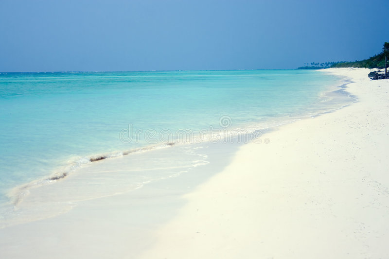 Download Tropical  Beach At The Agatti Island Stock Photo - Image: 8543668