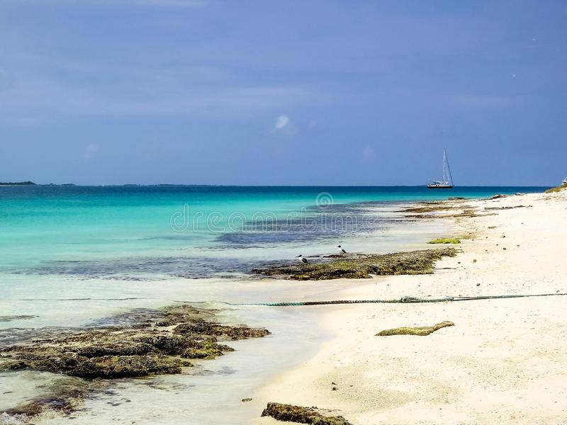 Tropical beach at archipelago Los Roques, Venezuela royalty free stock photos