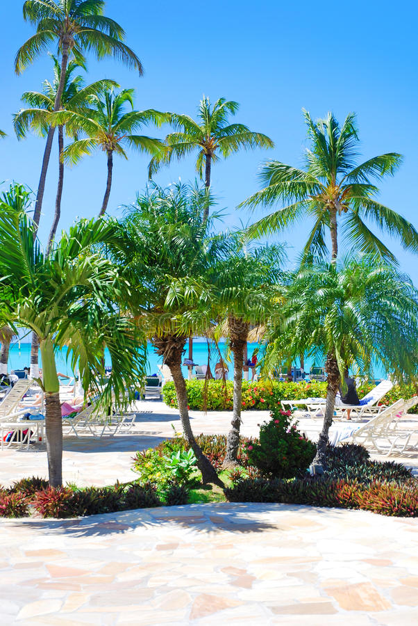 Tropical beach background stock photos