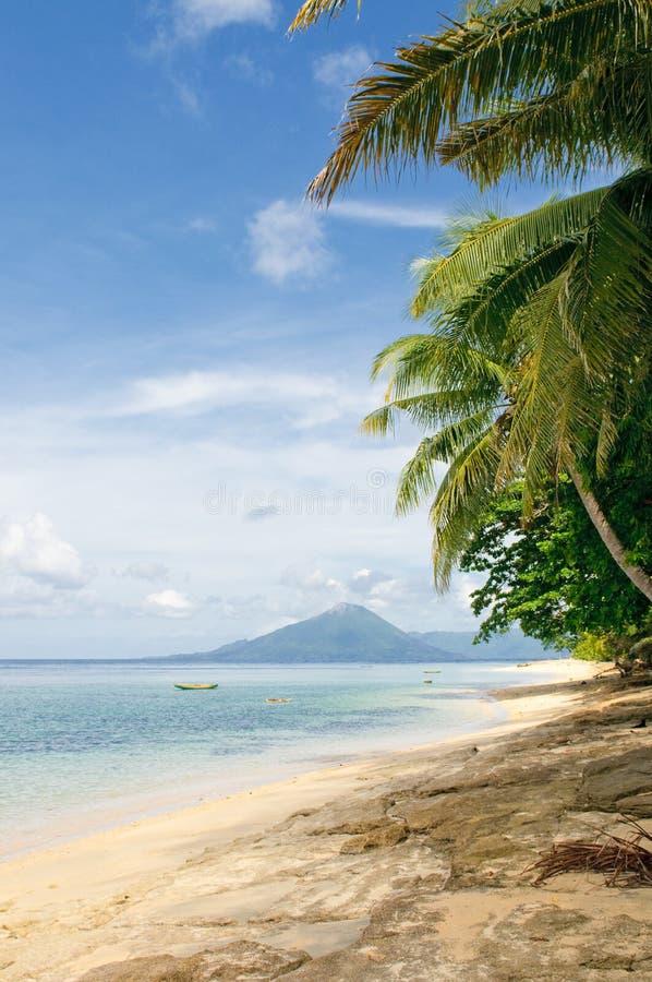 Free Tropical Beach, Banda Islands, Indonesia Stock Image - 8325191