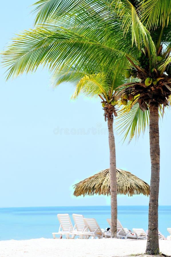 Download Tropical Beach stock image. Image of panama, resort, water - 31696111