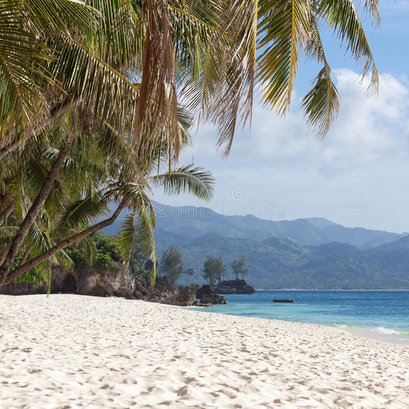 Tropical beach with beautiful palms and white sand, Philippines royalty free stock photos