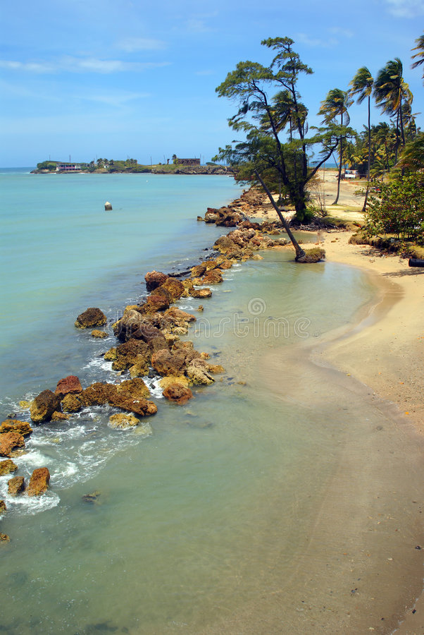 Tropical beach and blue ocean in Puerto Rico. Vertical stock image