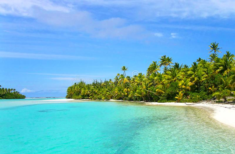 Tropical beach in caribbean sea, Saona island, Dominican Republic.  royalty free stock photo