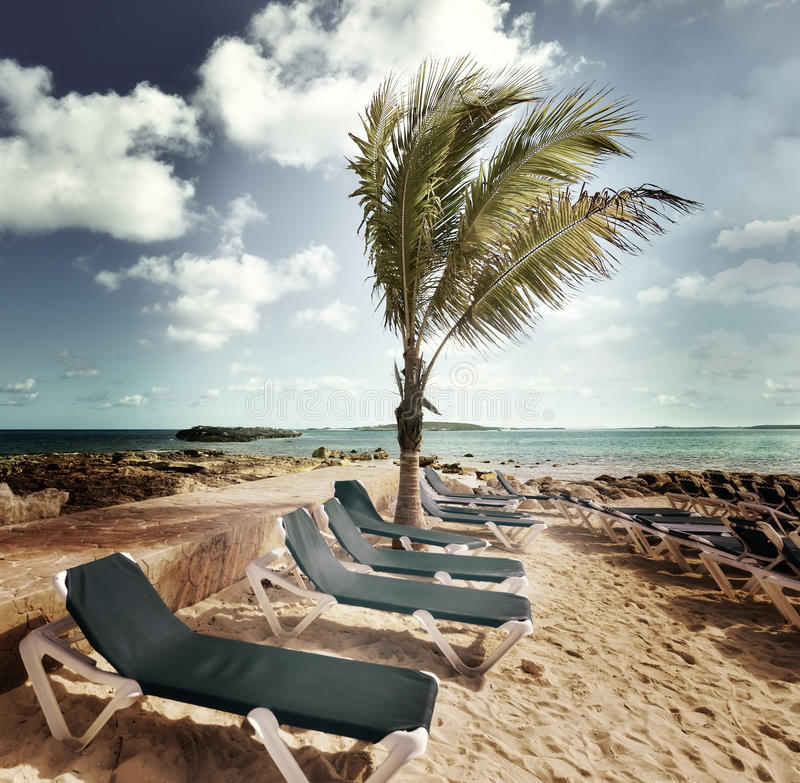 Download Tropical Beach stock photo. Image of chair, rocks, palm - 32167598