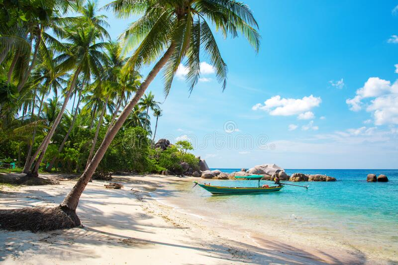 Tropical beach with coconut palm and longtail boat royalty free stock image