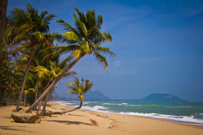 Download Tropical Beach stock image. Image of island, green, scenery - 39507515