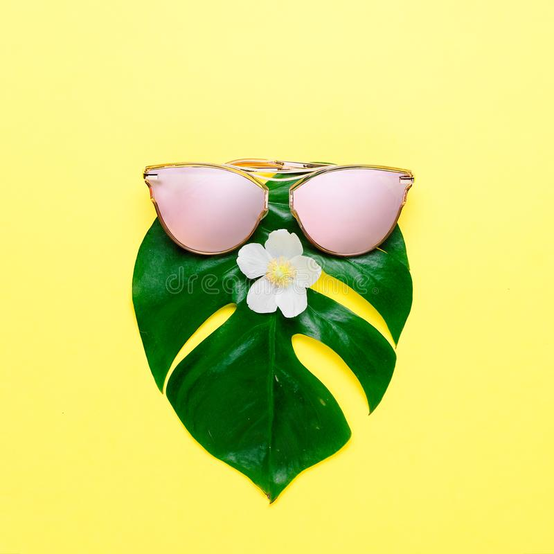 Summer fun concept. Fashionable hipster Monstera in trendy glasses. Creative poster, bright yellow background. Tropical beach concept. Fashionable hipster stock image
