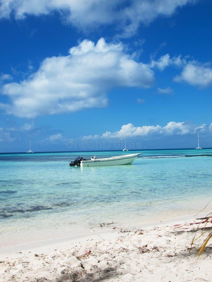 Download Tropical Beach In Dominican Republic. Caribbean Sea Stock Photo - Image: 37509178