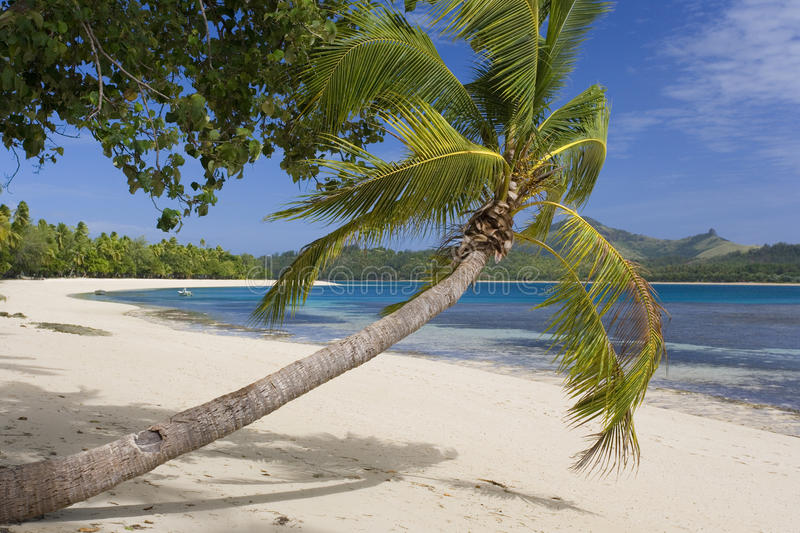 Tropical Beach - Fiji - South Pacific royalty free stock images