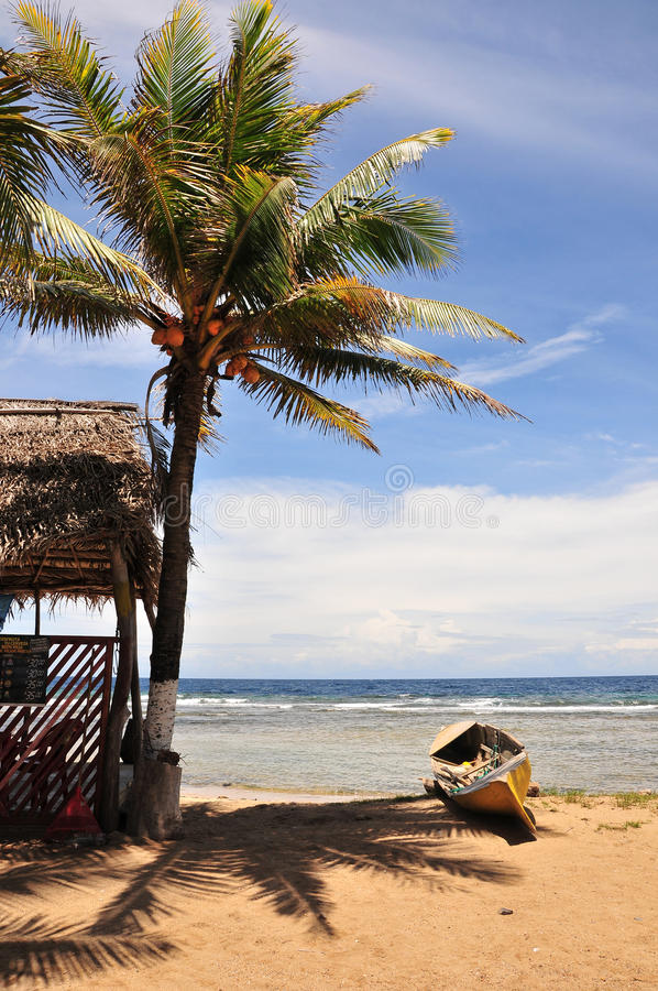Download Tropical Beach Hut And Canoe Stock Photo - Image: 14429312