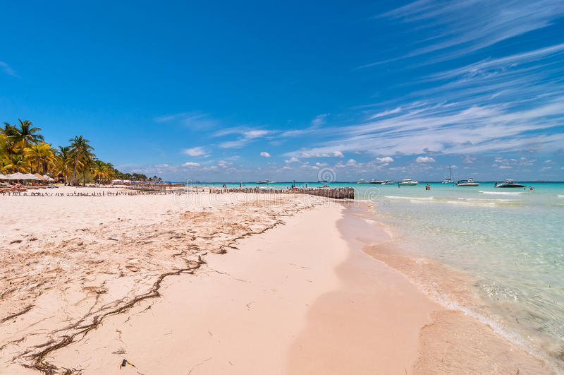 Tropical beach in Isla Mujeres, Mexico royalty free stock image
